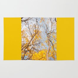 Yellow autumn leaves on trees in park Rug