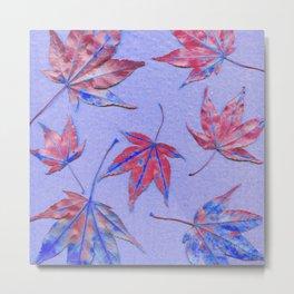 Japanese maple leaves - maroon on light cobalt blue Metal Print