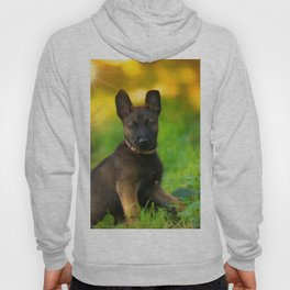 Wonderful autumn forest with curious dog puppies Hoody