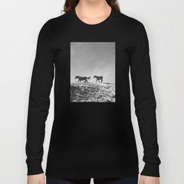 Pryor Mountain Wild Mustangs Long Sleeve T-shirt