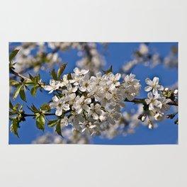 Magic White Cherry Blossom Dream Rug