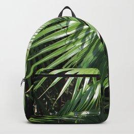 Fan Palms Backpack