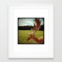antlers Framed Art Prints featuring Antlers by Anna Dykema Photography