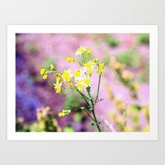 yellow wild flower Art Print