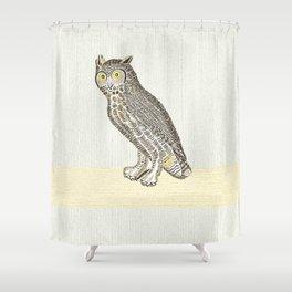 Owl Eyes, Owl ears, Owl insight Shower Curtain