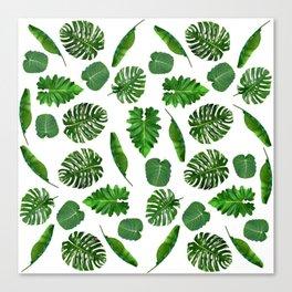 Five tropical leaves Canvas Print