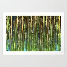 Sun on Morning Marsh Art Print