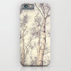 Winter Birch Trees Slim Case iPhone 6s