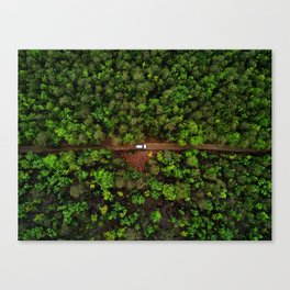 Nature Is Still The Most Superior Technology Canvas Print