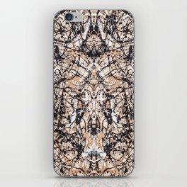 Reflecting Pollock iPhone Skin