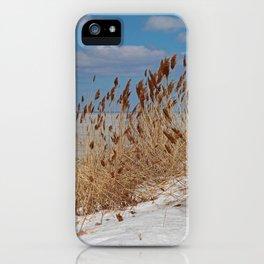 Tame a Wild Wind II (vertical) iPhone Case