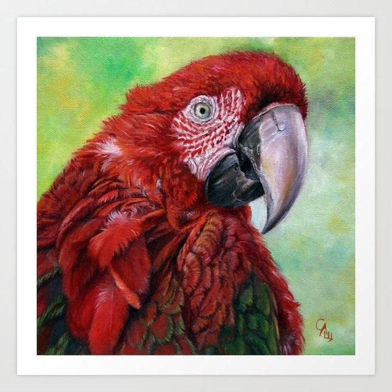Ara  macao oil5013 Art Print
