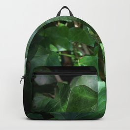 Ivy in the sunlight Backpack