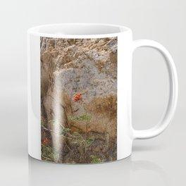 Mexico Mountain Flower Coffee Mug