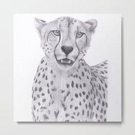 Cheetah Drawing Metal Print