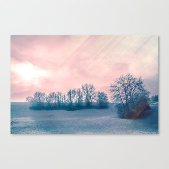 A Winter's Tale Canvas Print