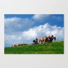Amish farmer plowing Canvas Print