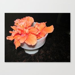 Flower: Hibiscus Canvas Print