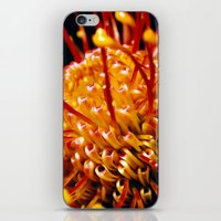 candy iPhone & iPod Skins featuring Candy by Stephen Linhart