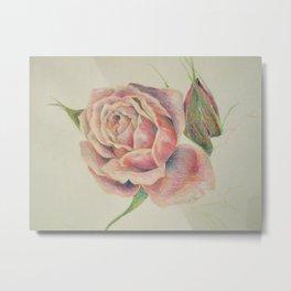 rose study Metal Print