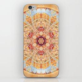 Mandalas of Forgiveness & Release 17 iPhone Skin