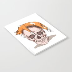 Skull Cat Notebook