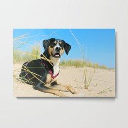 Dog by Nathalie Ehrnleitner Metal Print