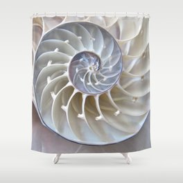 Nautilus Shell Shower Curtain