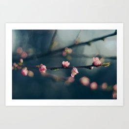 BLOSSOMING TOGETHER II Art Print