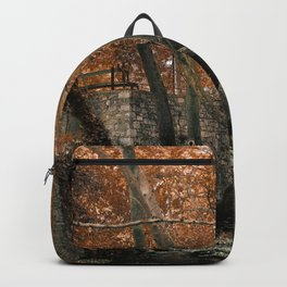 Forest with waterfall Backpack