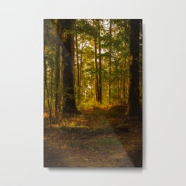 Peaceful Morning in Mississippi Metal Print