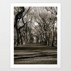 Central Park Art Print
