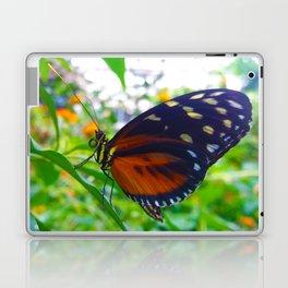 Tiger Longwing Butterfly Laptop & iPad Skin
