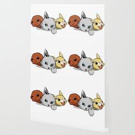 family pet Wallpaper