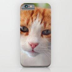Garfield - a red cat iPhone 6s Slim Case