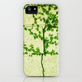 Ivy Wall iPhone Case