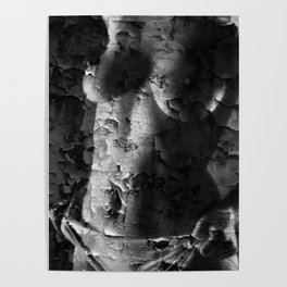 Textured Topless Poster