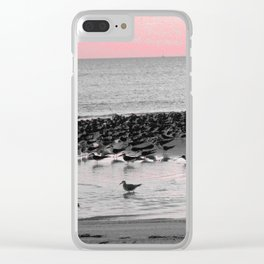 Skimmers at Sunset Clear iPhone Case