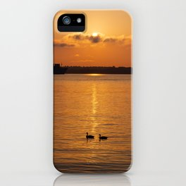 Ducks in the Sunrise iPhone Case