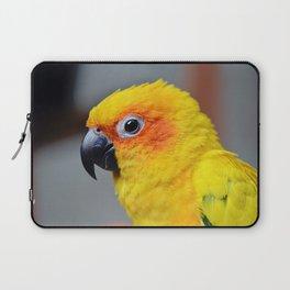 Vibrant Package Laptop Sleeve
