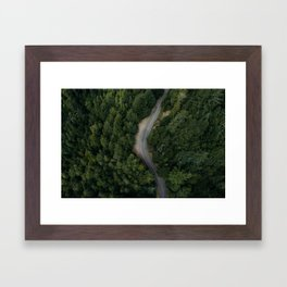 NATURE - PHOTOGRAPHY - FOREST - HIGHWAY - ROAD - TRIP - TREES Framed Art Print