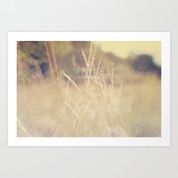 Hazy Days of Summer Art Print