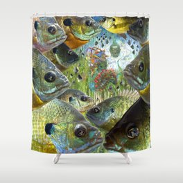 Awareness and Emergence Shower Curtain