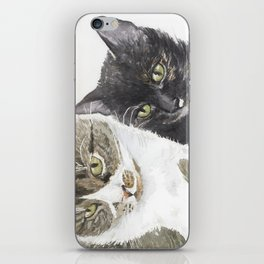 Two cats - tabby and tortie iPhone Skin