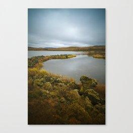 Undisturbed Canvas Print