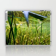 Submerged Grass Laptop & iPad Skin
