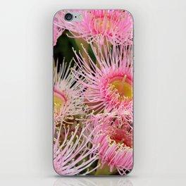 Pink Flowering Gum iPhone Skin
