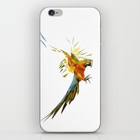 low poly iPhone & iPod Skins featuring Low poly Parrot by exya