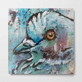 Urban Pigeon  Metal Print