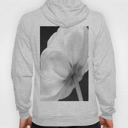 Close-up of white tulip in black background #decor #society6 #buyart Hoody